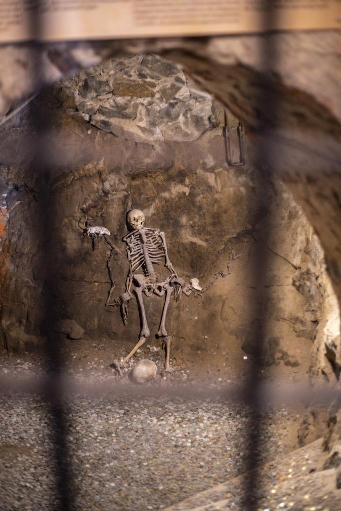 Szkielet księżniczki Małgorzaty w lochu głodowym – Foto: Adrian Sitko