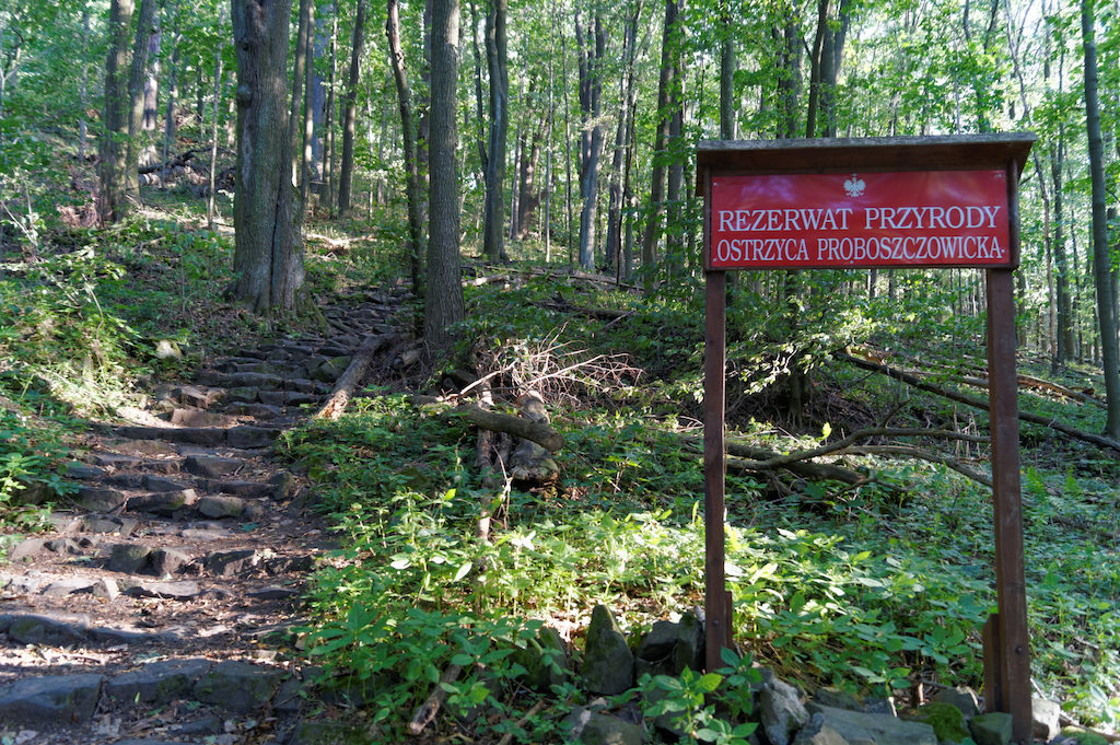 Rezerwat przyrody Ostrzyca Proboszczowicka na Pogórzu Kaczawskim
