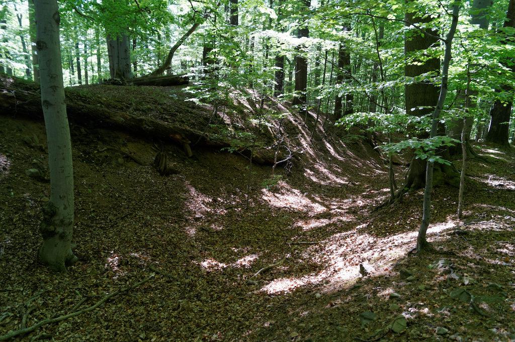 Przed zamkiem w terenie są dobrze widoczne pozostałości wałów zachowane z wcześniejszych założeń obronnych