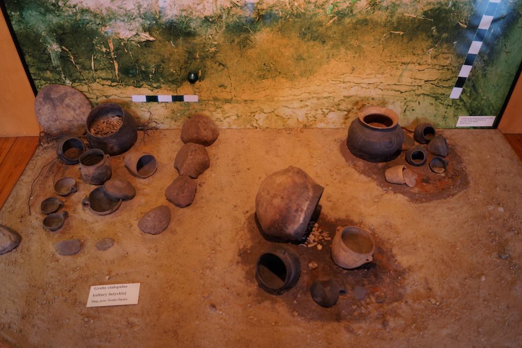 Groby ciałopalne kultury łużyckiej – Ekspozycja Muzeum Archeologicznego we Wrocławiu