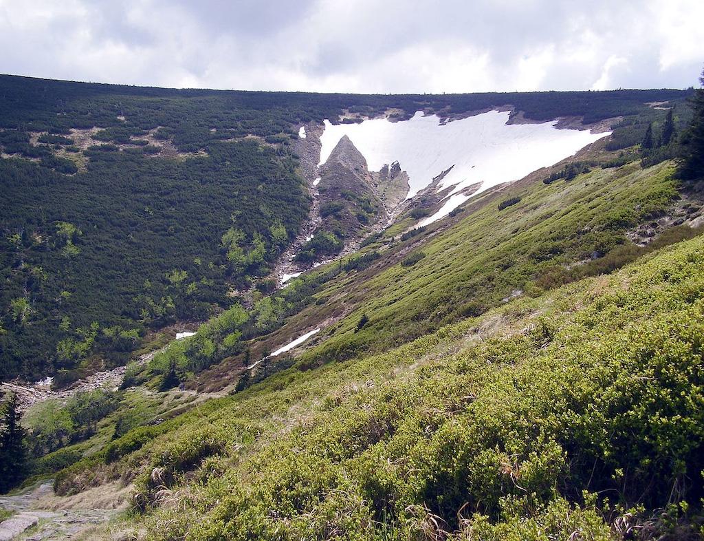 Biały Jar – Przykład niszy niwalnej – Foto: Petr Kamil Tułaza Źródło: wikimedia.org