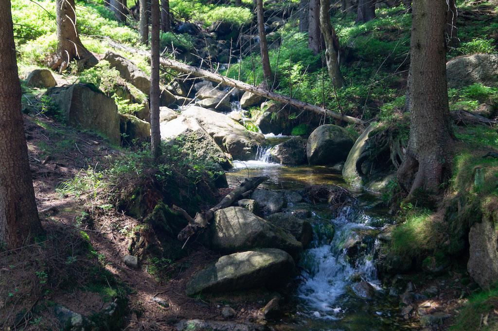 Potok Wrzosówka