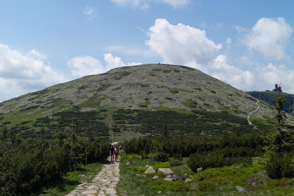 Wielki Szyszak (czes. Vysoké kolo) 1509 m n.p.m.