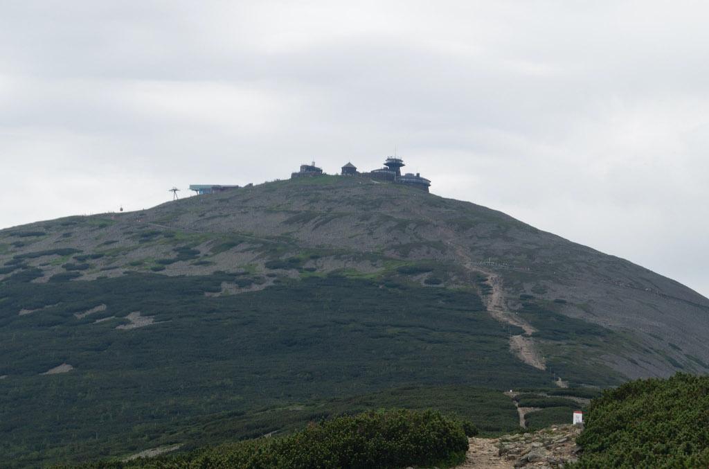 Szczyt Śnieżki jest przykładem piętra alpejskiego w Karkonoszach