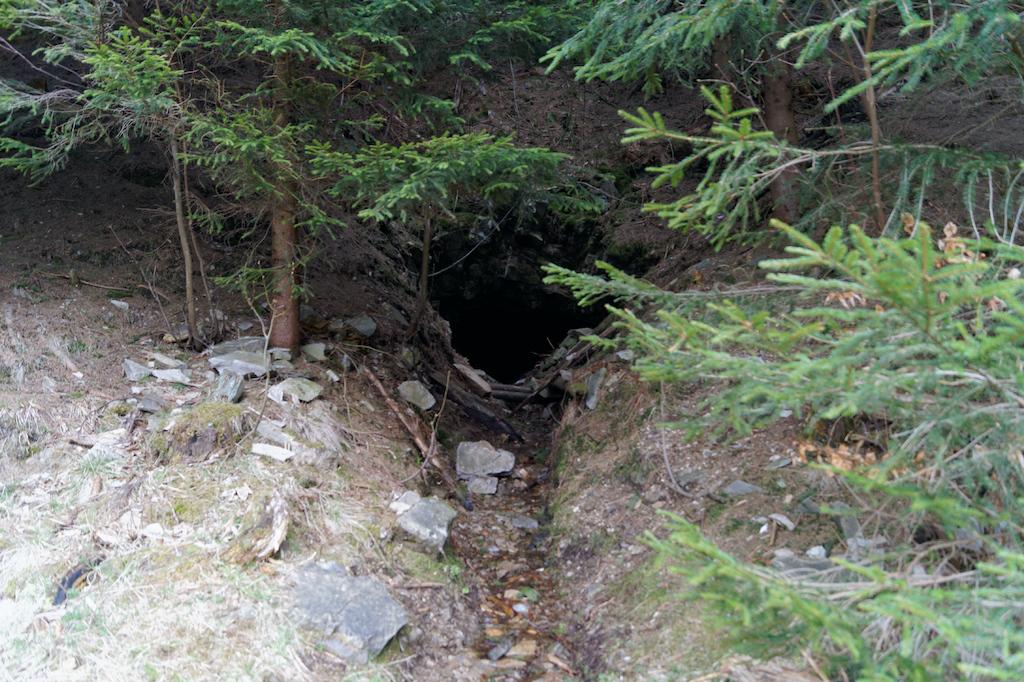 Sztolnia poszukiwawcza rudy urany w okolicach Budnik (Kowarski Grzbiet)