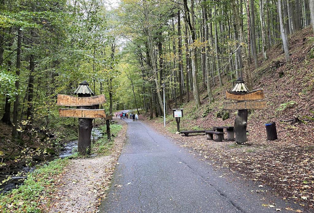 """Droga do jaskini – Rezerwat przyrody """"Jaskinia Niedźwiedzia"""""""